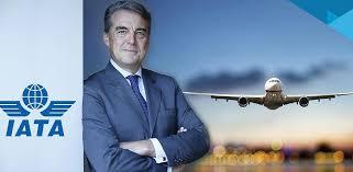 IATA CEO