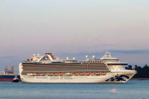 Princess Cruises, faaliyetlerine 2 ay ara veriyor.